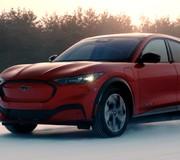 La nostra generazione Mustang Puledro e accessori NUOVO