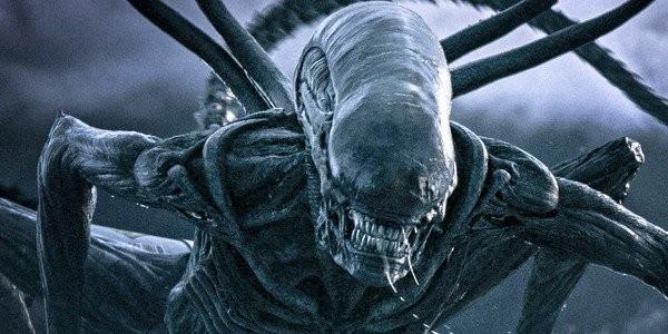 Alien di Ridley Scott, il regista conferma lo sviluppo di un nuovo film -  HDblog.it