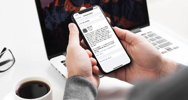 Apple smette di firmare anche iOS e iPadOS 14.5: stop al downgrade da iOS 14.5.1 - image  on https://www.zxbyte.com